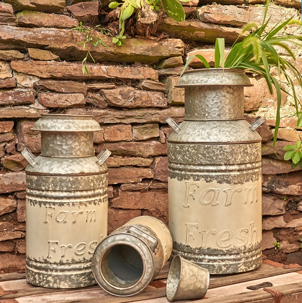 Buy Home Garden Wall D 233 Cor Items Zaer Ltd International